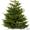Різдвяні, новорічні ялинки,  сосна оптом #1350879