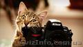 Академия фотографии Чернигове. Поступление без ВНО Звоните