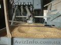 Оборудование для производства различных круп - Изображение #7, Объявление #1606634