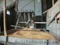 Оборудование для производства различных круп - Изображение #8, Объявление #1606634